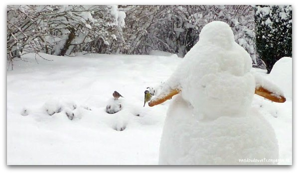 neige-2010-aisne-3