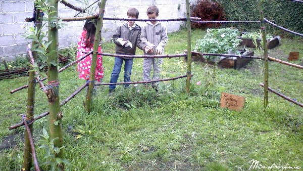 cabane vegetale