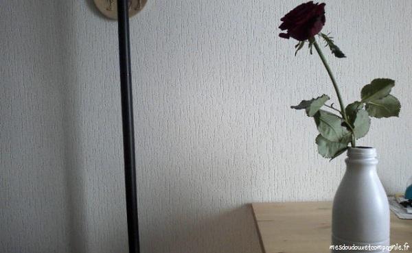 rose-dans-bouteille-de-lait