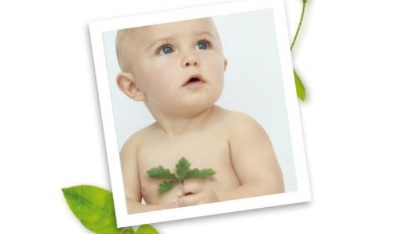 un-arbre-un-bebe