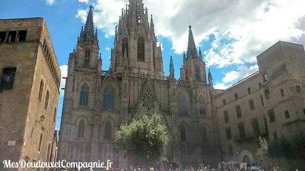 barcelone-santa-creu